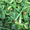 Fiddleheads are Here!
