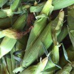 Now taking registrations for our 10-week Mid-Season Farm Market Share Program!